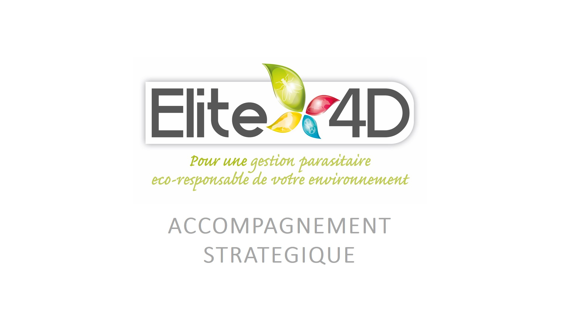 Logo Elite 4D